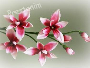 branche-orchidee-artificiel-rose