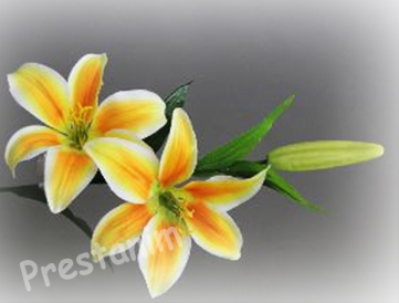 D corations florales fleurs artificielles d corations pour un mariage - Fleurs artificielles pour mariage ...